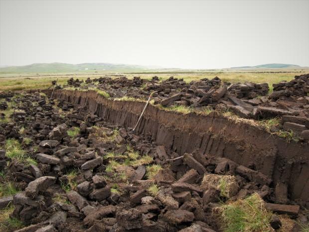 Laphroaig Peat Beds